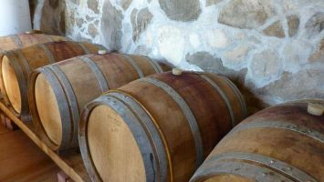 Wine cellar tour Croatia