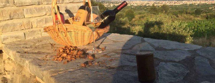 vinska tura 2