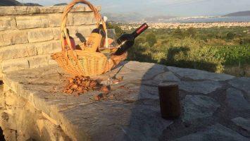 Kozajk wine tour in Croatia